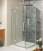 Ten Hinged Shower Door with Inline Panel