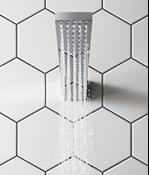 Zion showerhead