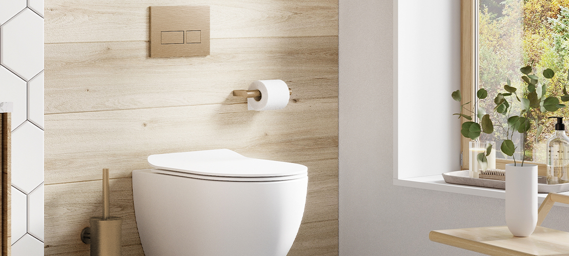 Wall Hung Toilet and Brushed Brass Bathroom Accessories